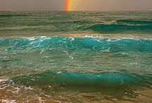 Over the Rainbow / by Michele Caine