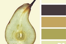 Color Palettes / by Pamela Strother