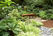 Tropical garden ideas / Tropical gardens & planting