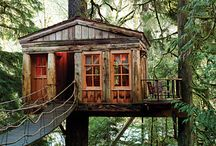 Tree houses / Design ideas