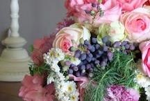 Flowers/Gardening / by Sarah Dodson