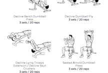 Beginer Workout Gym