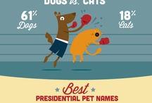 Pet Infographics / Browse the Dog infographics and data visualizations to learn some little know facts about Man's Best Friend.