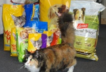 AHOW - May - Food Drive for Homeless Animals Month