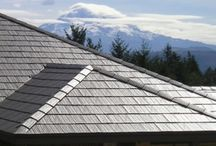 Metal Roof Dreaming