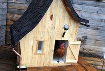 kippen/konijnenhok