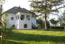 Case românești