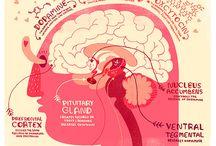 Brain inspi