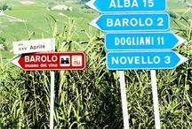 Favorite Wine Regions / #vineyards #wineregions
