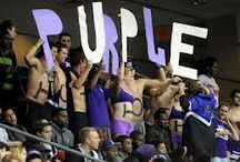 Bleed Purple! / Showcasing some of the most spirited moments from UB hosted events on and off campus! Go Purple KNIGHTS!