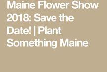 Maine Flower Show 2018