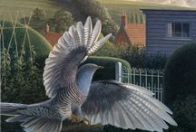 ptaki - malarstwo