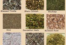 magic-herbs