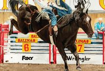 2016 California Rodeo Salinas / July 21-24, 2016. Get info at www.carodeo.com  / by California Rodeo Salinas