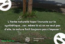 Permaculture - Humour / Retrouvez ici une série d'images humoristiques en lien avec la nature et la permaculture mises en ligne par PermacultureDesign.  Découvrez nos articles complets sur : http://www.permaculturedesign.fr