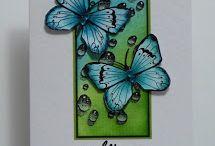 Přání s motýlky a jiným hmyzem