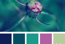 Colour // Palettes