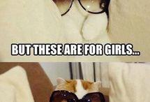 Lovecats! / by Rub3n1te