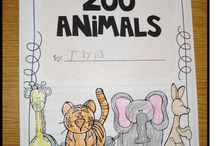 Zoo / by Mandy Owens
