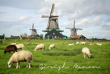 Dutch Stuff / by Peggy Guerrero