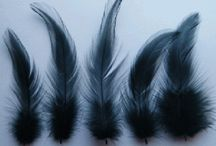 Cock/Rooster hackle feathers / Packs of 50 available from WWW.FLYNSCOTSMAN.COM