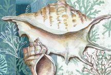 Deniz dekopaj resimleri