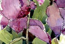 Akwarele | Watercolors