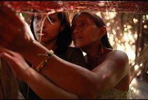 Save the Rainforest & Indigenous People / by Rachelle Davis