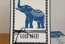 SU lucky elephant