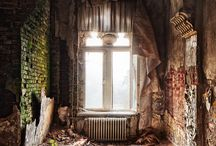 Beauty amid the Ruins