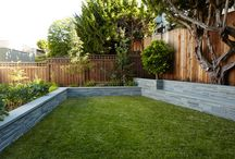 Fence Inspiration & Ideas