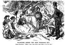 Victorian Picnic