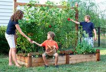 Garden Ideas / by Pam Fate