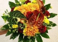 Kukkakimput