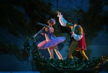 SLEEPING BEAUTY / Sleeping Beauty - Grigorovich Ballet Thetare