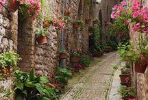 Secret walls and alleys