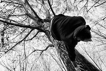 Parkour / Parkour, urban gymnastics, doing rad, amazing things with the human body. / by Ingrid Terpening
