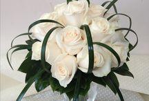 rose avorio