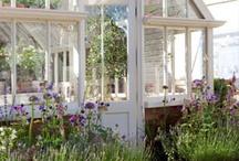 Classical Orangeries / Beautiful glasshouses
