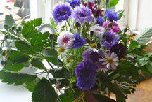 Blommor och buketter / Egna buketter, buketter jag tagit foton av och inspiration från nätet!