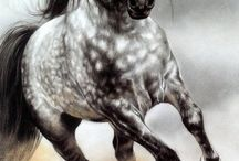 tatto,horse