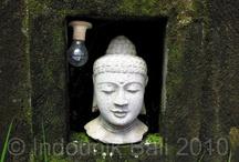 enlightenment / by Indounik