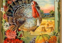 Thanksgiving / Thanksgiving inspiration for hosting and decor