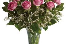 pretty pinks / by Terrafolia Flowers