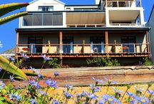 Mariner Guesthouse / Mariner Guesthouse offers B&B & Self-catering accommodation on the slopes of the fynbos covered mountain in historical Simon's Town. | B&B Accommodation Simon's Town, Cape Town