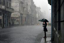 Rain / by Karina Werner