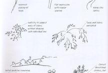 Teken en schildertips