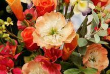 Jülide / Çiçekler