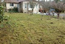 Orting Homes For Sale
