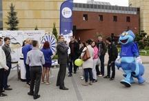 Dzień Unii Europejskiej 2013 w Rzeszowie